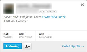 Twitter TeamFollowBack